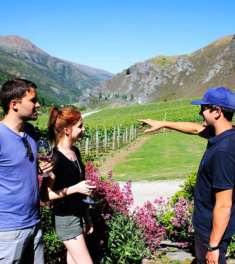 Wakatipu Wine Adventure